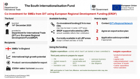 DIT Internationalisation Fund Infographic